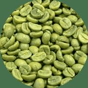 Kenya AA+ Kegwa Estate Verde